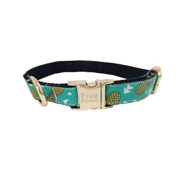 Rubio Rules | Pineapple Collar | Dog Supplies