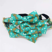Rubio Rules | Pineapple Collar with Bow Tie | Dog Supplies