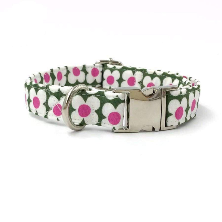 Rubio Rules | Clover Collar with Bow Tie | Dog Supplies