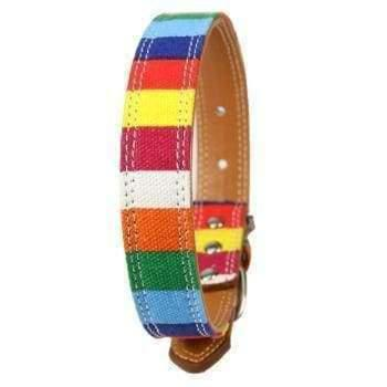 Rubio Rules | Rainbow Collar | Dog Supplies