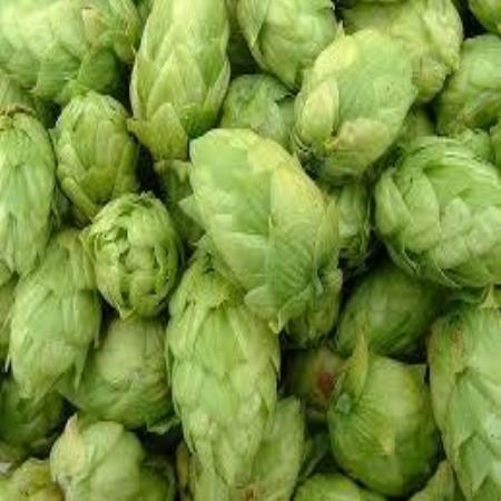 Hops - Admiral 2018 (100g Vacuum Packed Leaf)