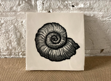 Handcrafted and painted earthenware ammonite glaze tile - Margate Tile Works
