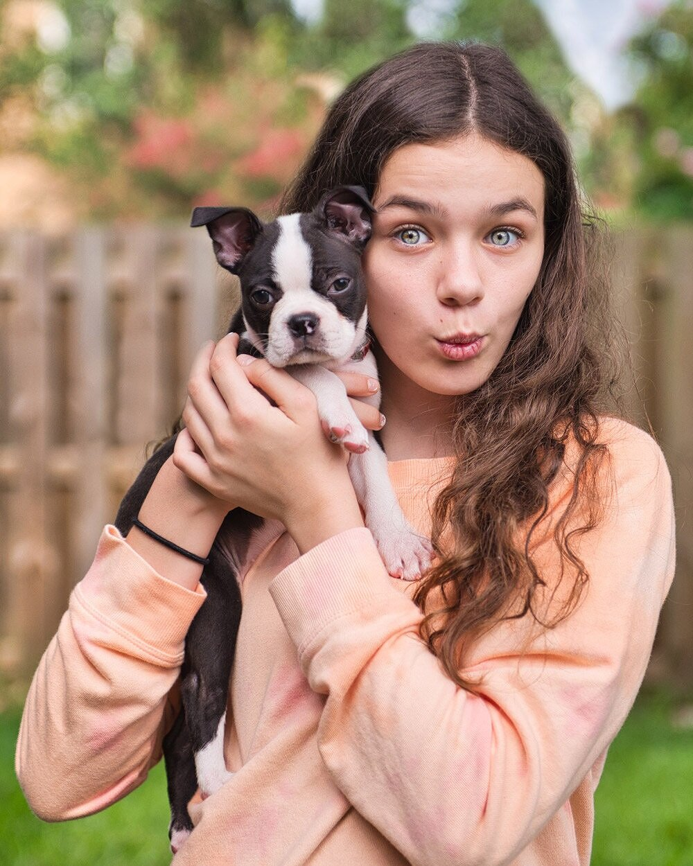 How to Easily Photography Your Dog in a Simple Dog Photoshoot — Boston Terrier Puppy Shoot