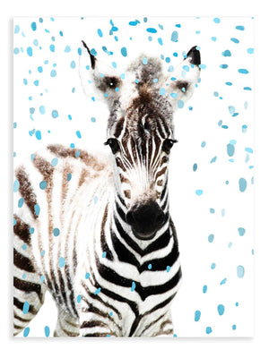 Baby Zebra Confetti Animal Print - Delicious Design House