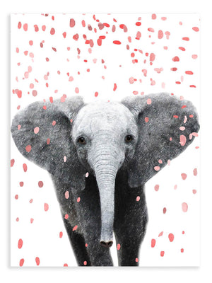 Elephant Confetti Animal Print - Delicious Design House