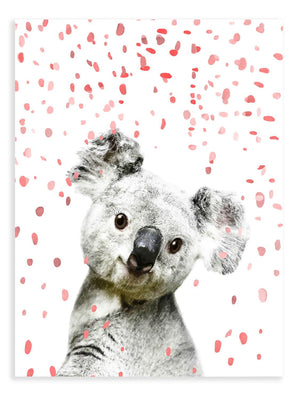 Koala Confetti Animal Print - Delicious Design House