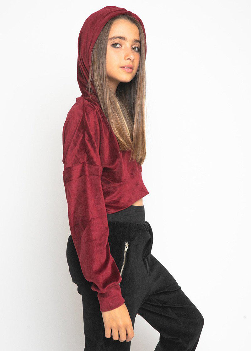 Girls Burgundy Velour Crystal Cropped Hoodie