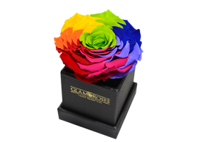 Little Box Rainbow - Glamoroses