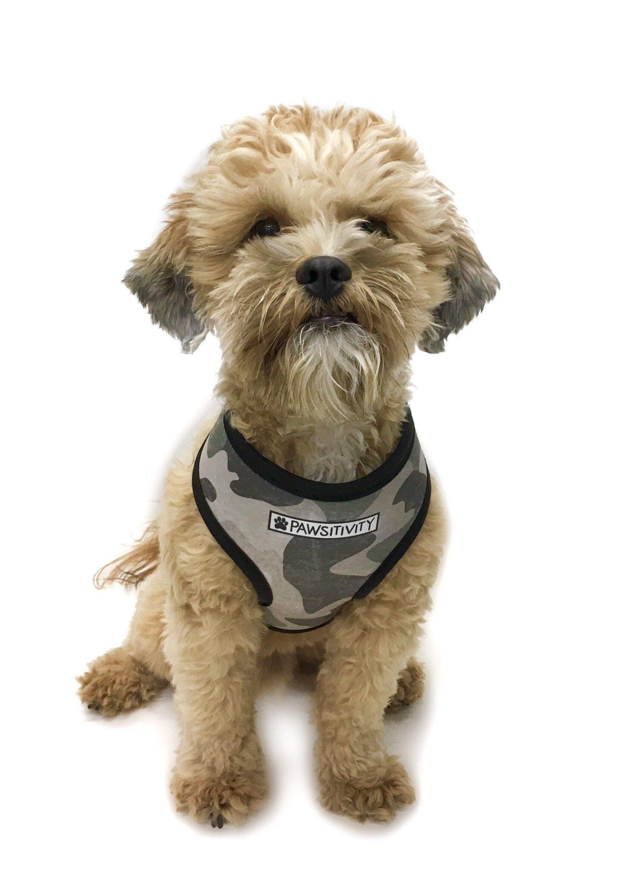 Pawsitivity Reversible Harness - Camo & Black Marble