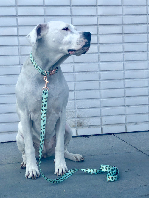 Mint Pineapple Collar