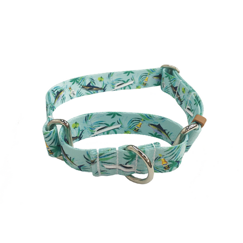 Pawtron Martingale Collar