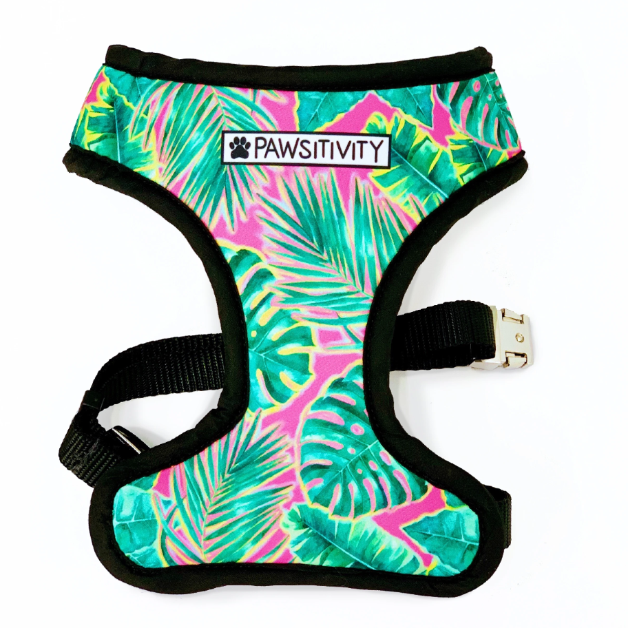 Pawsitivity Reversible Harness - Whales & Pink Palms
