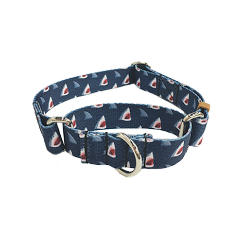 Sharks Martingale Collar