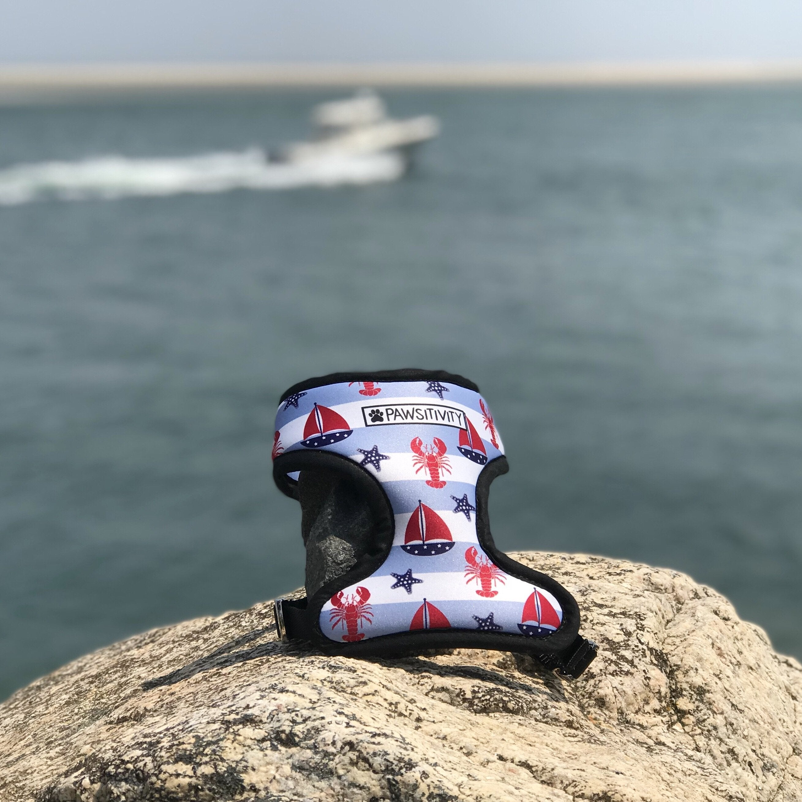 Pawsitivity Reversible Harness - Nautical & Anchor Harness