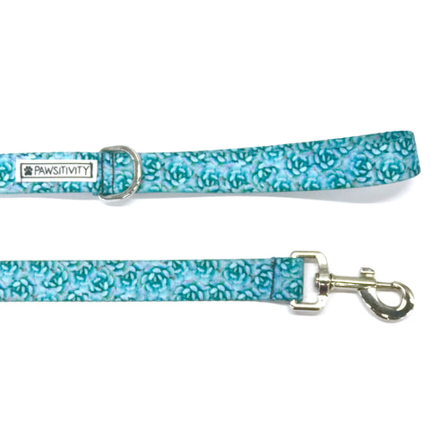 Blue Succulent Collar