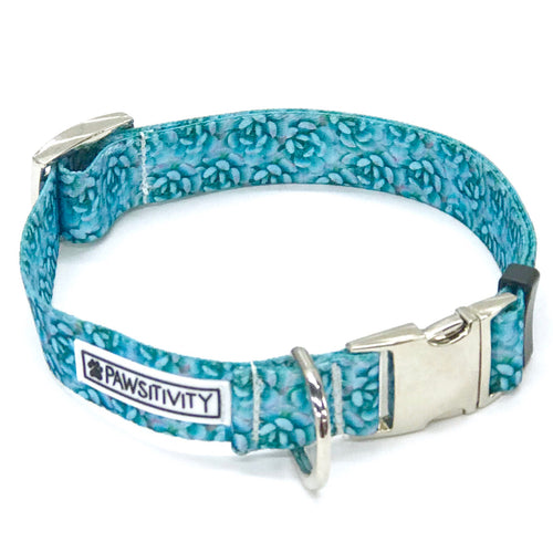 Pawsitivity Blue Succulent Collar