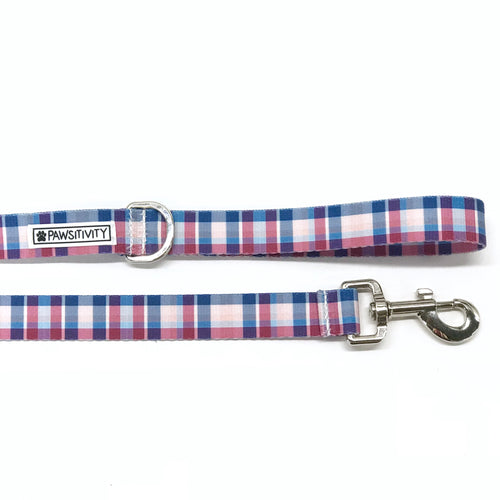 Pawsitivity Madras Plaid Leash
