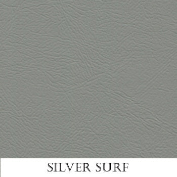 Silver Surf