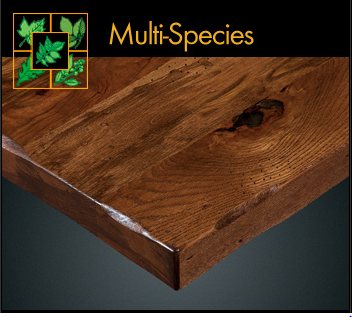 3075 Series Rustic Multi Species Plank Table Top