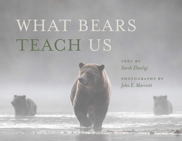 What Bears Teach Us