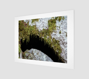 Mossy Rock 11x14 Art Print from Engrooved Splash Productions located in British Columbia, Canada.