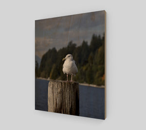 Gulls Post 11x14 Wood Print from Engrooved Splash Productions located in British Columbia, Canada.