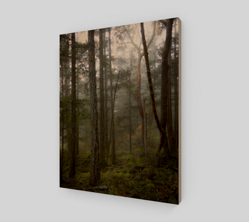 Misty Morning 11x14 Wood Print from Engrooved Splash Productions