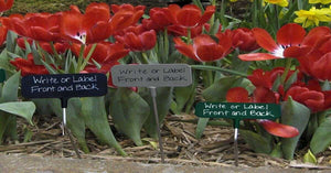 Garden Marker Samples in 3 different sizes and angles and 3 nameplates in different colors