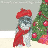 Brock the Cairn Terrier dog in a Tammy Hat Christmas Card