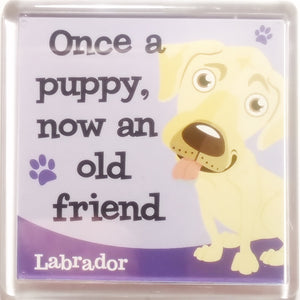 "Dog Magnet ""Labrador (Cream)"" by Paper Island"