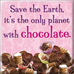 Fridge Magnet - MT102 - Save the earth, It's the only planet