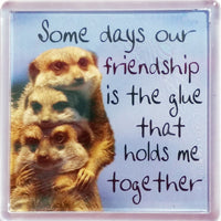 History & Heraldry Sentiment Fridge Magnet - MAG-014 - Some days our Friendship