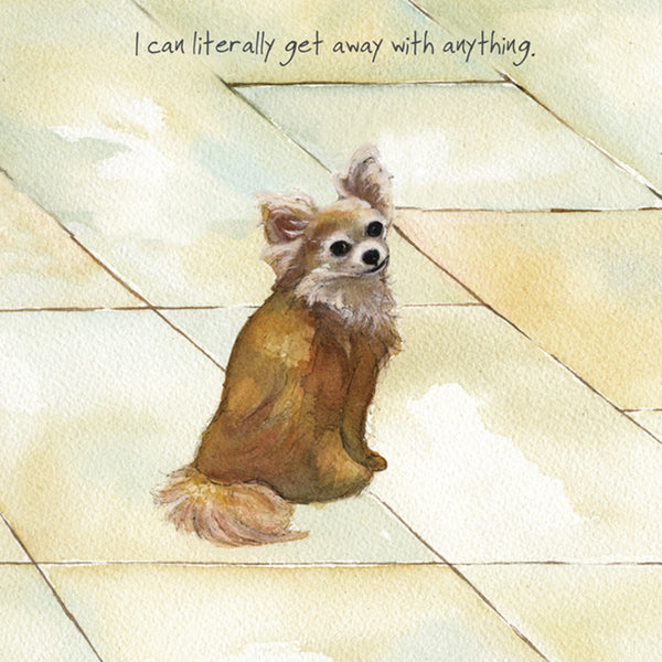 Chihuahua Greeting Card by the little dog laughed