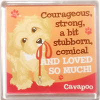 "Wags & Whiskers Dog Magnet ""Cavapoo"" by Paper Island"