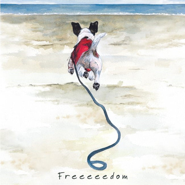Jack Russell Greeting Card – Freedom