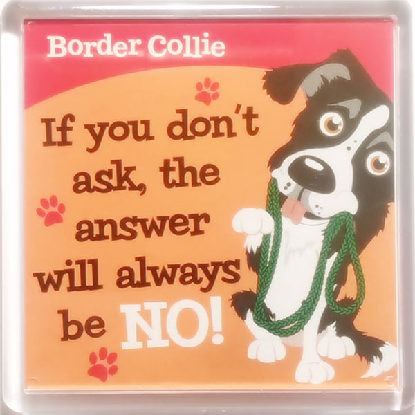 "Wags & Whiskers Dog Magnet ""Border Collie"" by Paper Island"