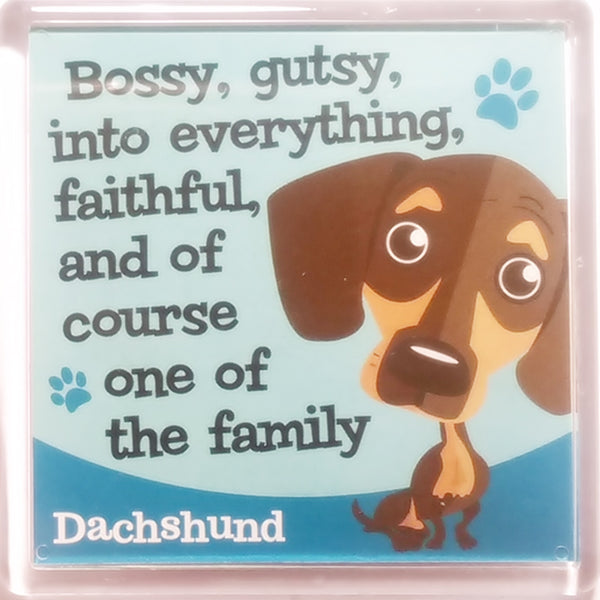 "Wags & Whiskers Dog Magnet ""Dachshund"" by Paper Island"