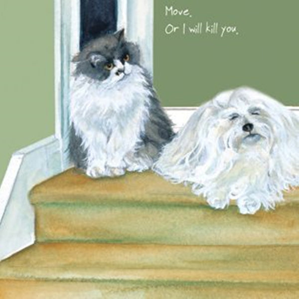 Cat & Dog Greeting Card – Kill