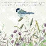 Marsh Tit Greeting Card