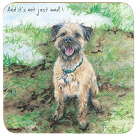 Border Terrier Dog Coaster - Not Mud