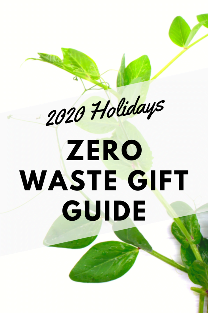The perfect zero waste guide for Holidays !