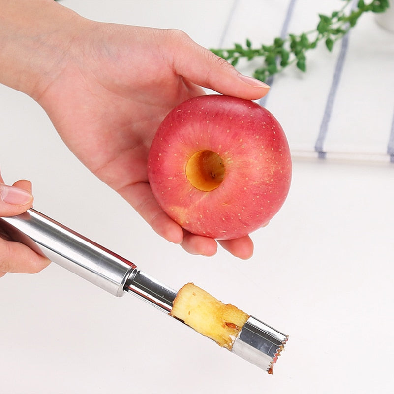 Stainless Steel Fruit Corer