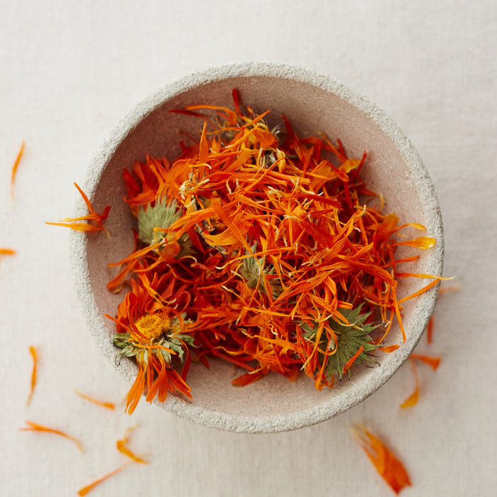 Our Ingredients: Calendula