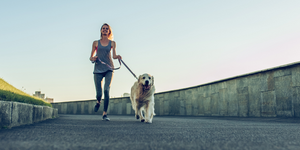 Running With Your Dog: 5 Tips For Getting Started