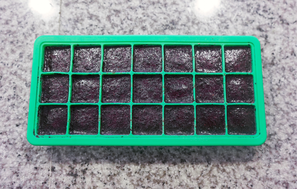 frozen blended blueberries in ice cube tray