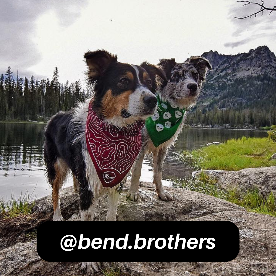 @bend.brothers on Instagram