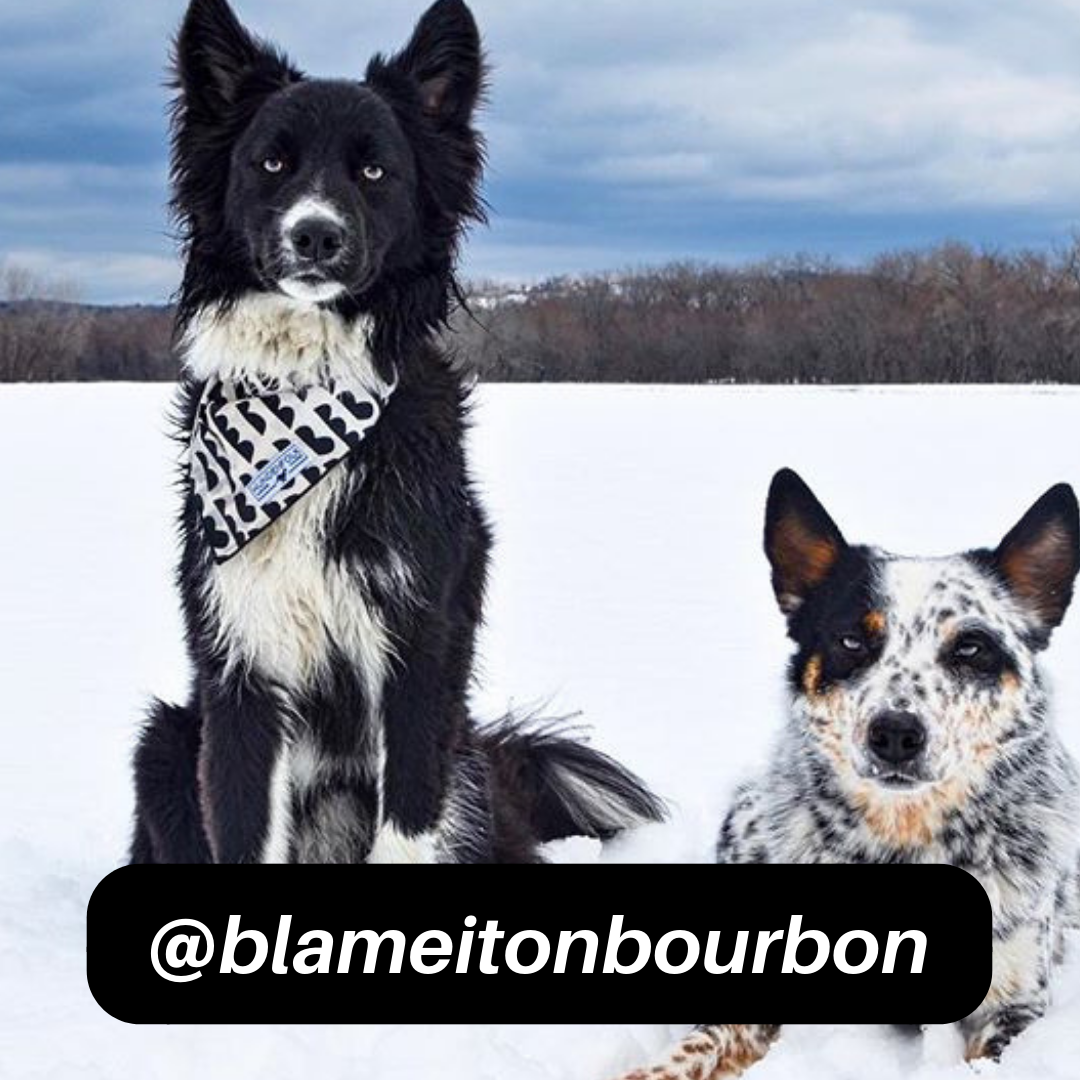 @blameitonbourbon on Instagram
