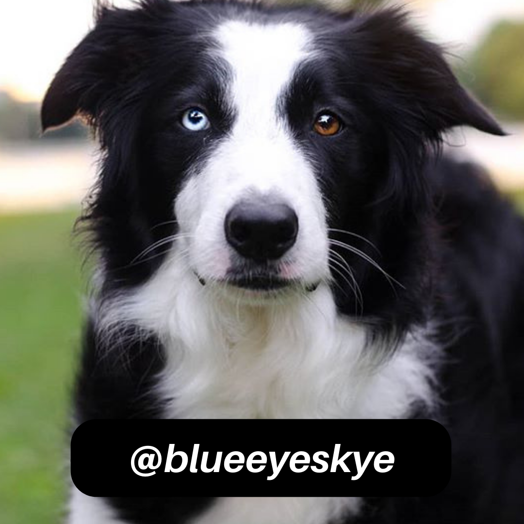 @blueeyeskye on Instagram