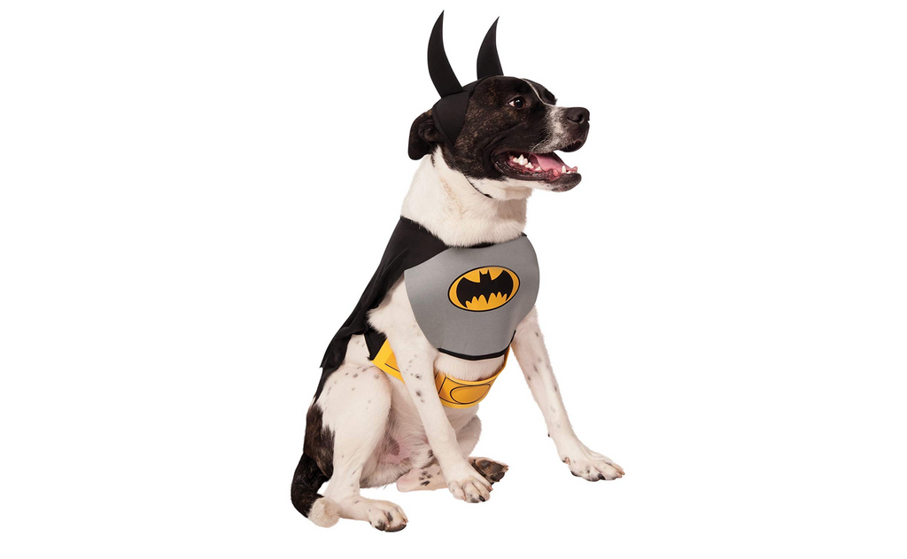 dog costume bat man