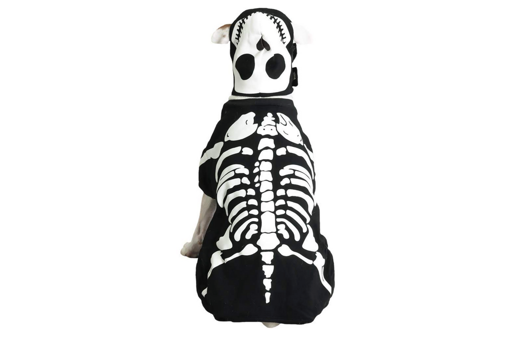 dog costume skeleton
